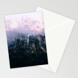 surimpression Stationery Cards