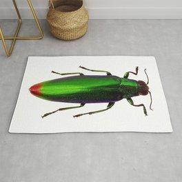 Chrysochroa Fulgidissima Jewel Beetle Rug