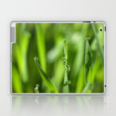 Morning dew 8548 Laptop & iPad Skin