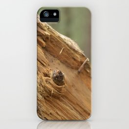 broken tree iPhone Case