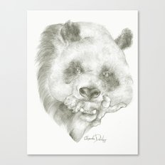 Giant Panda Mother Canvas Print