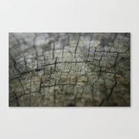 wood Canvas Prints featuring Wood by David Bastidas