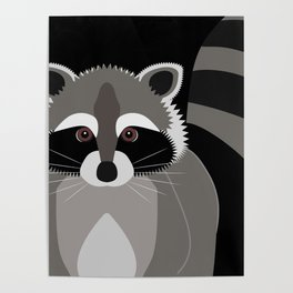 Raccoon in the Night Poster