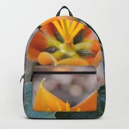 Fremontodendron Blossom Backpack