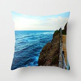 Pathway Along the Coast Throw Pillow