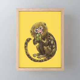 Pygmy Marmoset Framed Mini Art Print