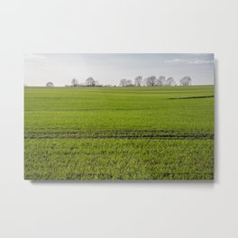 Green Field Blue Horizon Metal Print