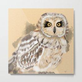 Short Eared Owl #2 Metal Print