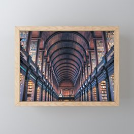 Dublin, Ireland Trinity College Library Framed Mini Art Print