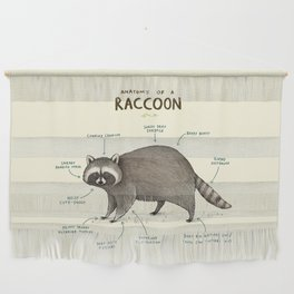 Anatomy of a Raccoon Wall Hanging