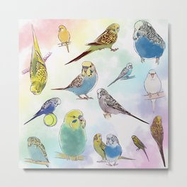Budgies Metal Print