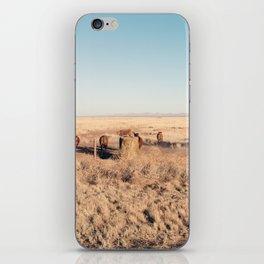 West Texas Stampede iPhone Skin
