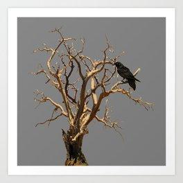 RAVEN ON DEAD TREE GREY ART Art Print