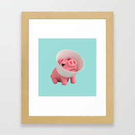 Rosa the Pig and Cone of Shame Framed Art Print