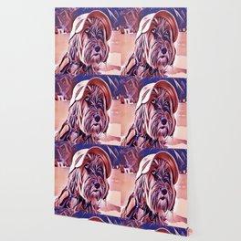 The Tibetan Terrier Wallpaper