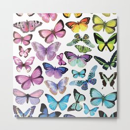 Butterfly Rainbow Metal Print