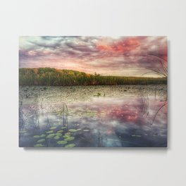 Lily pad sunset Metal Print