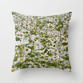 White and Yellow Daisies Throw Pillow