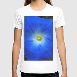 Blue, Heavenly Blue morning glory T-shirt
