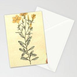234-linum arboreum, Tree Flax Stationery Cards
