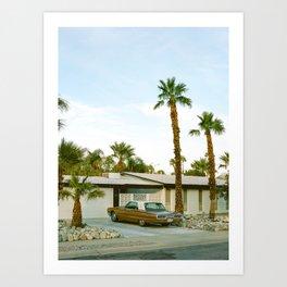 Palm Springs Mid Century Modern 3 Art Print