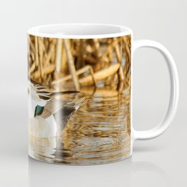 Eurasian Wigeon at the Pond Coffee Mug