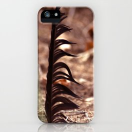 The feather / Die Feder iPhone Case