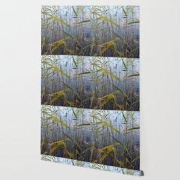 Bed of reeds Wallpaper