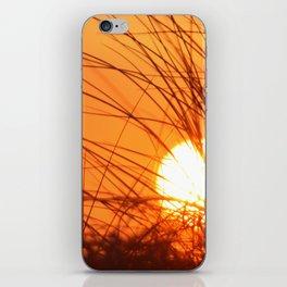 Sunset Through the Grass iPhone Skin