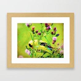 Goldfinch Yellow Bird Purple Flowers A101 Framed Art Print