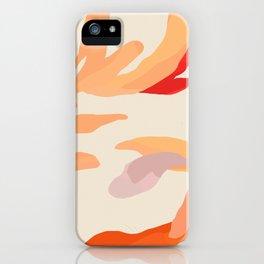Abstract Desert Botanicals iPhone Case