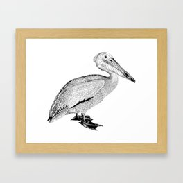 Artistic Falcon Bird Framed Art Print
