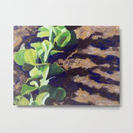Plants sprouts Metal Print