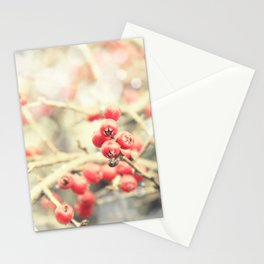 Beautiful Red Berries in the Sunshine Stationery Cards
