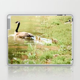 Mom and Babies Swimming Goslings Laptop & iPad Skin