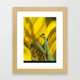She and Her Shadow, Preying Framed Art Print