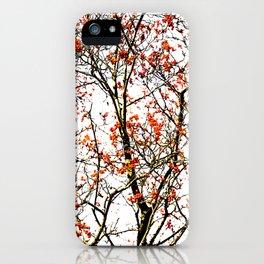 Red rowan fruits or ash berries iPhone Case