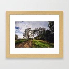 Natural Painting Framed Art Print