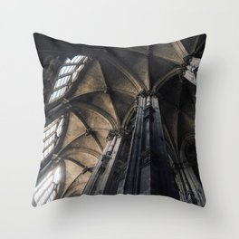 Vaulted Throw Pillow