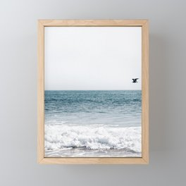 Fly By Framed Mini Art Print