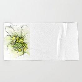 Watercolor Helleborus Beach Towel