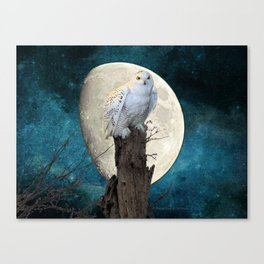 White Snowy Owl Bird Moon Blue A141 Canvas Print