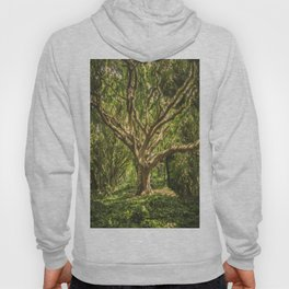 Spirits inside the wood Hoody