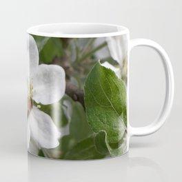 Bee on Mau ApleTree Coffee Mug