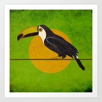 toucan Art Prints featuring toucan by John Beswick