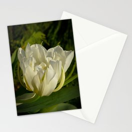 Double White Tulip by Teresa Thompson Stationery Cards