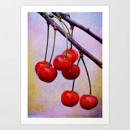Cherries on a twig Art Print