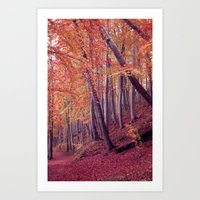 wood Art Prints featuring wood by Claudia Drossert