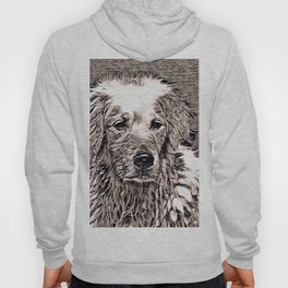 Rustic Style - Dog Hoody
