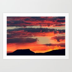 Morning Glory 2 Art Print